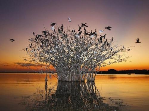 Мир в Фотографии (60 фото)