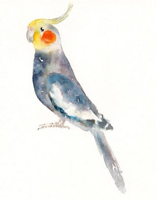 Иллюстратор dimdimini (50 работ)