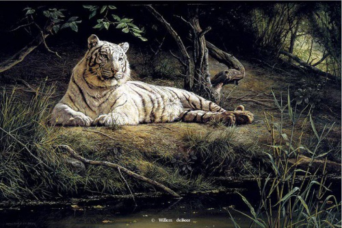Художник Willem de Beer (51 работ)