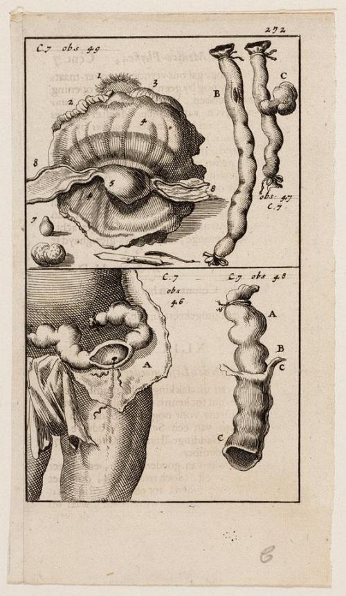Jan (April 16, 1649, Amsterdam - April 5, 1712, Amsterdam) and Casper (1672-1708) Luyken. Book illustrators. Part 2 (143 работ)