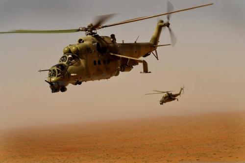 Под лепестками вертолета (31 фото)