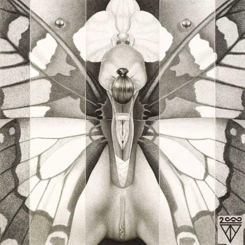 Artworks by Dirk Westphal (28 работ)