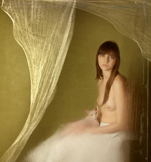 Photo Art Bogdan Zwir (150 работ)