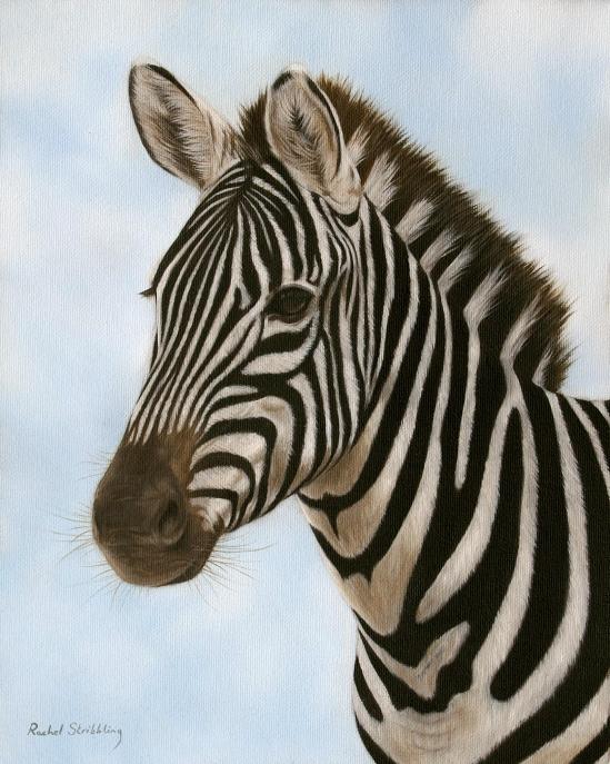 Zebra Head Painting Image Mag