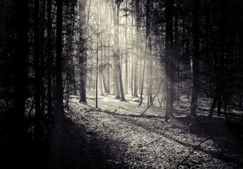Фотограф под ником Gehoersturz (56 фото)