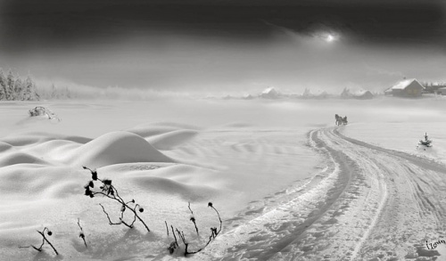 Photographer IGOR ZENIN (28 фото)