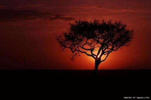 Красивые рассветы и закаты (59 фото)