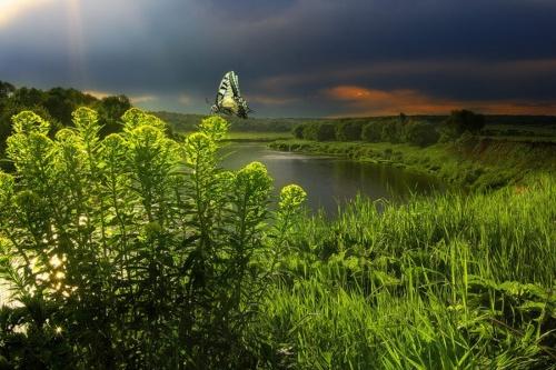Мистика фотографа Вадима Трунова (36 фото)