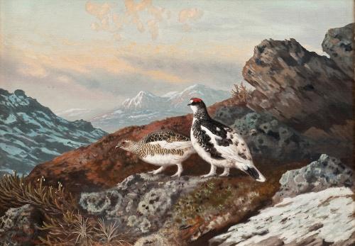 Финские художники Teppo Tera и Matti Karppanen (16 работ)