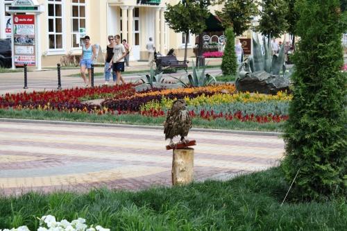 Фото экскурсия - КИСЛОВОДСК (50 фото) (1 часть)