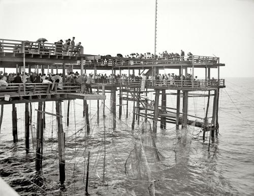 Ретро фотографии США 1890 - 1917 годов. (138 фото) (2 часть)