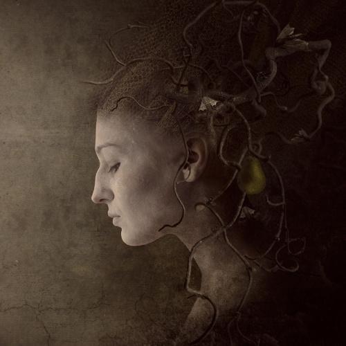 Концептуализм и сюрреализм Симоны Хельд (Simone Held) (44 работ)