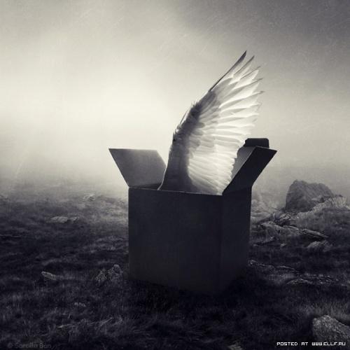 Удивительные фотоманипуляции Саролты Бан (35 фото)