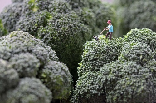 Маленькие человечки в большом мире еды (64 фото)