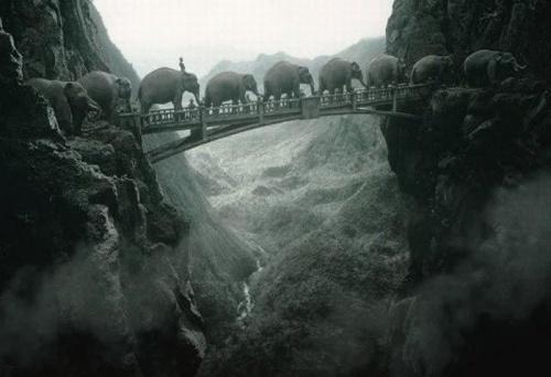 Фотоманипуляции от Томаса Хербрича (45 фото)