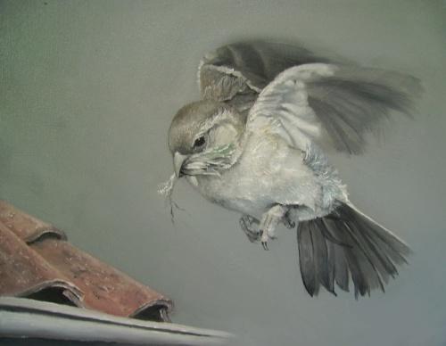 Artworks by Ineke Disveld (83 работ)