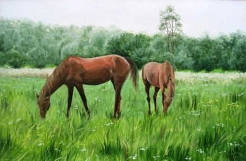 Художник Анна Бойко (48 работ)