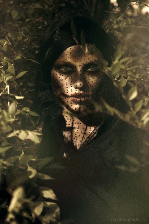 Фотограф Александр Новиков (46 фото)