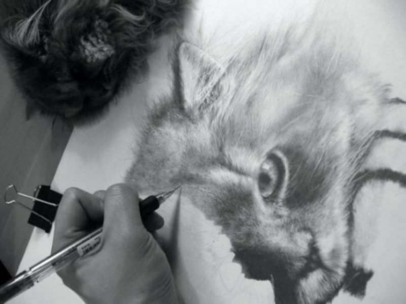 Натуралистичные рисунки карандашом