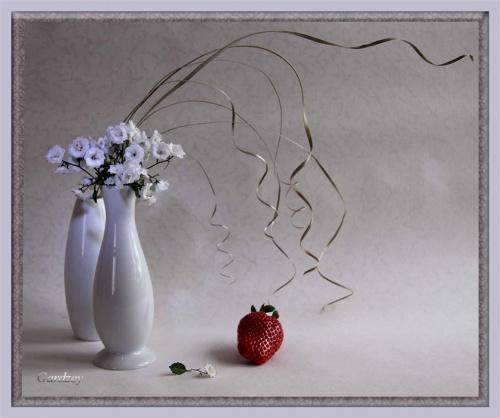 Фотохудожник Elen Gardzey (68 фото)