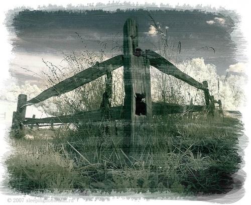 Работы Фотографа под ником Pilgrim (129 работ)