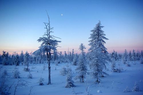 Фотограф Виктор Солодухин (63 фото)