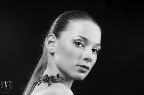 Фотограф Роман Большаков (Гламур) (58 фото)