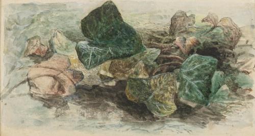 Английский художник Edward Thompson Davis (1833-1867) (22 работ)