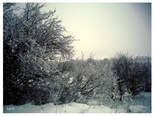 Фотоработы от feafox92 (45 фото) (1 часть)
